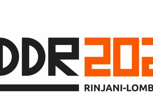 IDDR2020